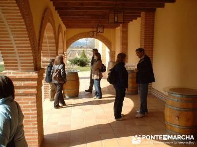 Degustación de vino - Viaje enológica a Ribera del Duero; mochilas para trekking; circo gredos